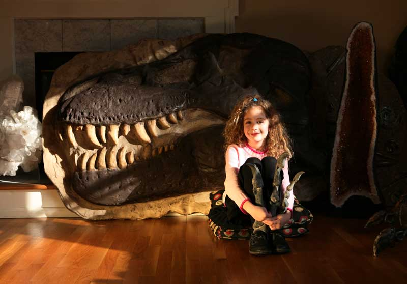 Girls love dionosaurs too! An amazing Real Museum in your own home.